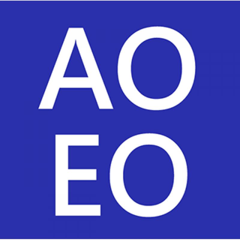 政務主任 / 二級行政主任 (AO/EO) 入職投考準備